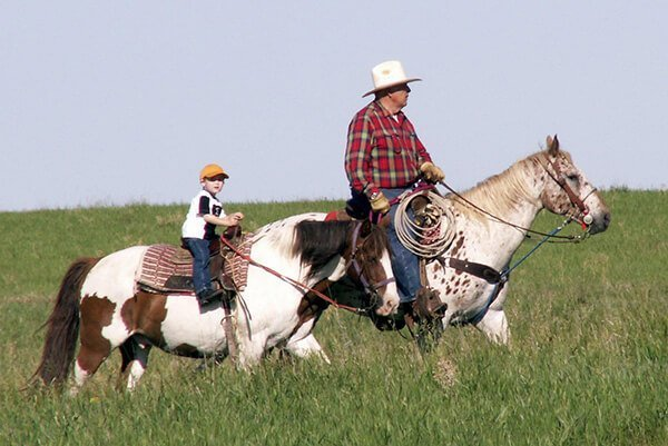 A man and young boy enjoying riding horses through a grass field